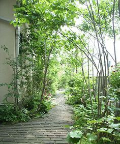 Japanese Garden Theme For A Getaway In Your Own Backyard Japanese Garden Theme. Japanese Garden Th Small Japanese Garden Plants, Japanese Garden Design, Landscape Elements, Landscape Design, Sloped Garden, Small Gardens, Shade Garden, Garden Planning, Garden Paths