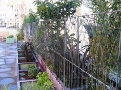wire garden fencing ideas - Bing Images