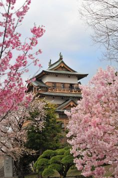 高島城 長野県諏訪市高島 Takashima Castle, #Japan #asia #photography #sakuras #castles