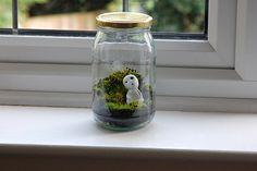 Kadoma in a jar