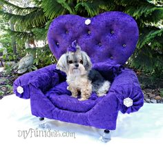 HOW TO MAKE A DIY PRINCESS DOG BED FROM AN OLD DRAWER | http://diyfunideas.com/how-to-make-a-diy-dog-bed-princess-throne-for-the-pampered-pooch-from-an-old-drawer/