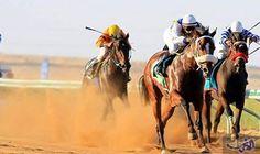 """""""آل خليفة"""" يؤكد أن رياضة سباقات الفروسية أصبحت أكثر نشاطًا: وجه الشيخ فيصل بن راشد آل خليفة رئيس الاتحاد الملكي للفروسية وسباقات القدرة…"""
