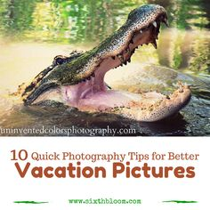 10 Quick Photography Tips for better Vacation Pictures, Photography Tips, Photography Tutorials, Photo Tips, Photography Business Tips