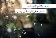 #الوتر