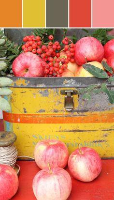 Harvest Hues  Lisa Perrone