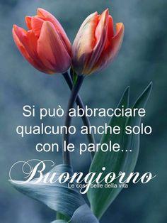 Italian Memes, Italian Quotes, Good Morning Good Night, Day For Night, Italian Greetings, Italian Phrases, Morning Inspirational Quotes, Start The Day, Tulips
