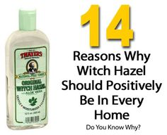 14 Reasons Why Witch Hazel Should Positively Be In Every Home | http://homestead-and-survival.com/14-reasons-why-witch-hazel-should-positively-be-in-every-home/