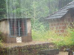 Konkan Rain