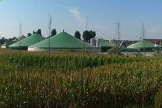 #biogas #biomasse #kraftwerke #förderung #landwirtschaft #eeg #ökostrom #reform