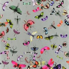 by Christian Lacroix  Mariposa by Christian Lacroix is an entomologist's dream, this wallcovering captures the inventiveness of nature's design in staggering detail  printed on a luxurious non woven ground for easy hanging  click here if you wish to order samples  pattern repeat : 27 in width 27 inches length 33 feet coverage 74 sq feet