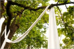 Fabric draping trees at an outdoor ceremony - Photo by Jason