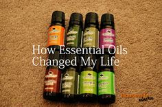 Housewife Eclectic: How Essential Oils Changed My Life and a Plant Therapy Essential Oil Giveaway