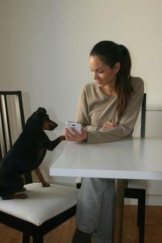 """Anche Capo è pronto a interagire con il suo veterinario di fiducia?! Su """"Consiglio dal Veterinario """" con un semplice click è possibile richiedere un consulto per il tuo cucciolo a uno specialista.  Visita il nostro sito: http://www.consigliodalveterinario.it/"""