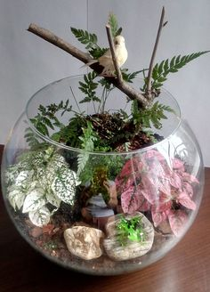 Make your miniature garden in a glass bowl: Ideas for glass terrariums – Little … - Mini Garden Terrarium Jar, Orchid Terrarium, Garden Terrarium, Succulent Terrarium, How To Make Terrariums, Little Gardens, Paludarium, Succulents Diy, Plant Decor