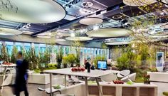 Image result for biophilic library Outdoor Furniture Sets, Outdoor Decor, Lounge, Ceiling Lights, Project 3, Lighting, Libraries, Schools, Google Search
