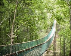 The Longest Swinging Bridge In The US Is In Tennessee