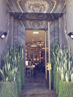 Aren't these planters funky. They line the entrance to Kelly Wearstler's LA store.