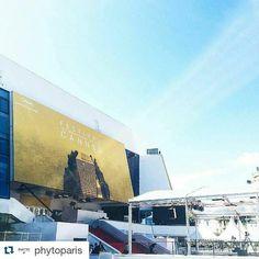 #Repost @phytoparis with @repostapp ・・・ En direct du palais des festivals et des congrès de Cannes ! #regram @julielaudacias #cannes2016 #phytocannes #phytoparis