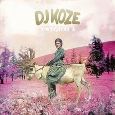 "DJ Koze - Amygdala"""