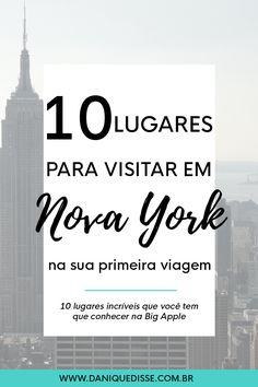10 lugares para visitar em Nova York na sua primeira viagem   Dani Que Disse