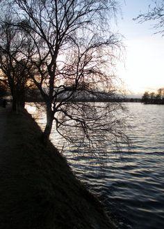 Taken 2/1/2013 at Damhus Lake.