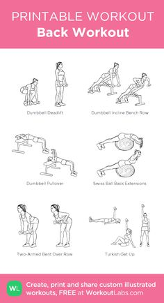 Back Workout · WorkoutLabs Fit - Upper body workout at gym - Gym Workout Tips, Biceps Workout, At Home Workout Plan, Easy Workouts, Upper Body Workout Gym, Gym Body, Chest Workout Women, Back Workout Women, Barbell Workout For Women