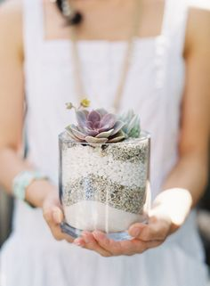 Dried Beans and Succulents in Glass Jar | photography by http://www.carolinetran.net/blog/
