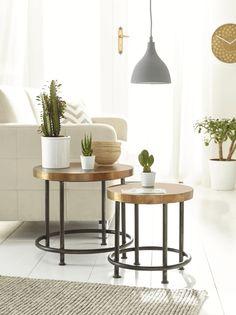 Wohnzimmer Deko Vasen Beistelltische Kaktus