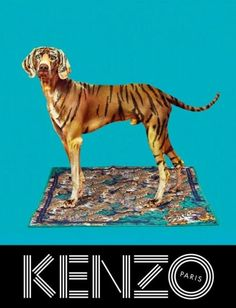 Kenzo - Collection Automne Hiver 2013 - 5