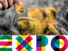 News* Expo 2015, Galletti: «Italia propone al mondo il modello sviluppo sostenibile» WWW.ORIZZONTENERGIA.IT #Milano #Sostenibilita #EXPO #EXPO2015 #EXPOMilano