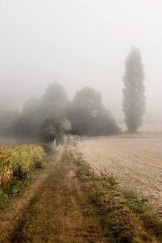 Country Walk, Country Roads, Country Living, Pictures Of England, Back Road, Foto Art, Farm Life, Belle Photo, Mother Nature