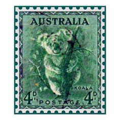 'Australian Koala Bear Vintage Postage Stamp ' Sticker by ukedward Australia Beach, Australia Map, Rare Stamps, Vintage Stamps, University Of South Australia, York Peninsula, Australian Vintage, Stamp Printing, Australian Animals