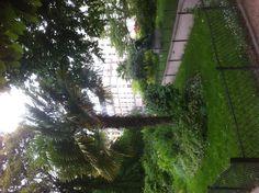 My local parc square maurice gardette Paris 11e