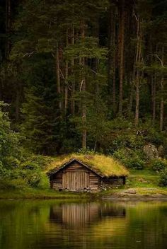 Norway house with grass roof