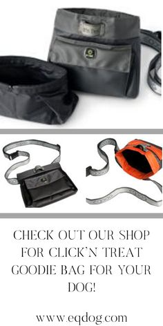 Check out our online shop for more outstanding dog equipment! Walking Equipment, Daily Walk, Healthy Dog Treats, Goodie Bags, Dog Walking, New Toys, Dog Owners, Dog Food Recipes, Your Dog