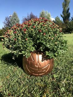 6 Plastic Pumpkin Bucket Makeovers by Chas' Crazy Creations Pumpkin Topiary, Diy Pumpkin, Pumpkin Crafts, Cute Pumpkin, Fall Crafts, Diy Crafts, Pumpkin Ideas, Holiday Crafts, Stone Spray Paint
