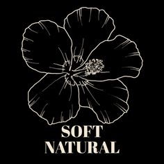 Soft Classic, Classy Chic, Body Types, My Style, Natural, Makeup, Inspiration, Art, Make Up