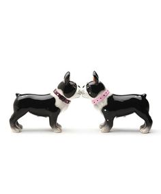 Boston Pups Salt & Pepper Shakers by Pacific Trading #zulily #zulilyfinds