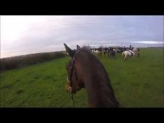 Hunting in Ireland Cross Country Jumps, Beach Rides, Horses For Sale, Cob, The Locals, Equestrian, Jazz, Irish, Ireland