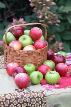 Rattlebridge Farm: The Novel Bakers Present Apple Week