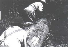 165 Boswerkers merk geelhoutblok vir opsaag in plankeaa Knysna, Zimbabwe, South Africa, Woodworking, History, Garden, Beautiful, Historia, Garten