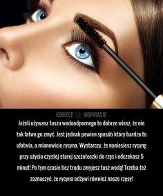 Smokey Eye, Make Up, Eyes, Makeup, Beauty Makeup, Smoky Eye, Cat Eyes, Bronzer Makeup