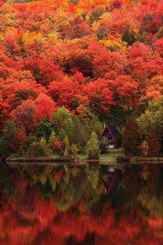 Autumn lake, Quebec