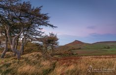 Breezy Cliff Ridge, Roseberry Topping - The North Yorkshire Gallery