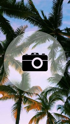 Instagram Logo, Instagram Design, Instagram Feed, Instagram Story, Insta Icon, Insta Posts, Instagram Highlight Icons, Story Highlights, Photo Quotes