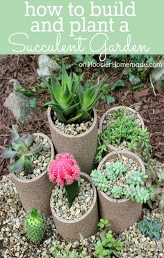 How to build and plant a Succulent Garden :: Instructions on HoosierHomemade.com