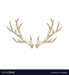 Deer Horns hand drawn logo emblem template vector image on VectorStock Bone Tattoos, Body Art Tattoos, Hirsch Wallpaper, Elk Horns, Logo Deer, Picture Wreath, Single Needle Tattoo, Deer Drawing, Hand Drawn Logo