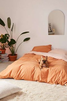 Orange sheets in a minimal bedroom Orange sheets in a minimal bedroom Bedroom Color Schemes, Bedroom Colors, Home Interior, Interior Design, Interior Ideas, Duvet Covers Urban Outfitters, Urban Outfitters Room, Urban Outfitters Apartment, Bedroom Orange