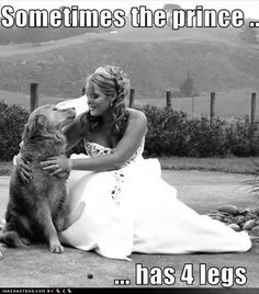 Sometimes the prince has 4 legs. Repin if you agree!