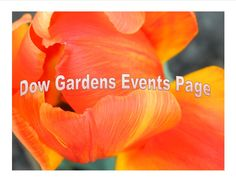 Click here for a current calendar of events at Dow Gardens in Midland MI!